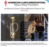 American Lung Association report