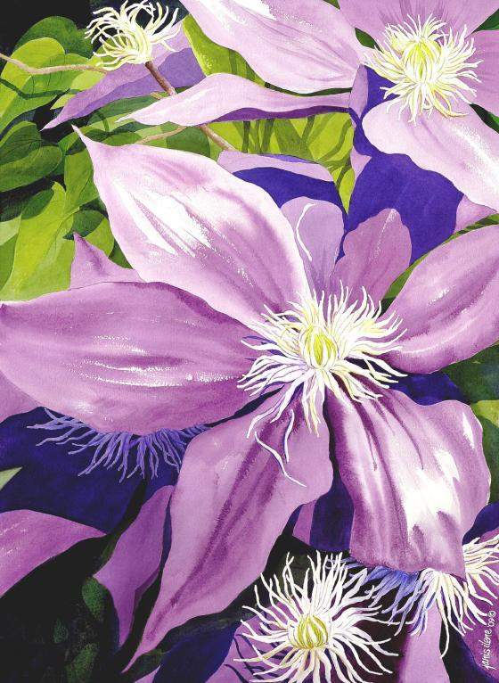 A profusion of purple clematis spills over the porch into the morning sun.