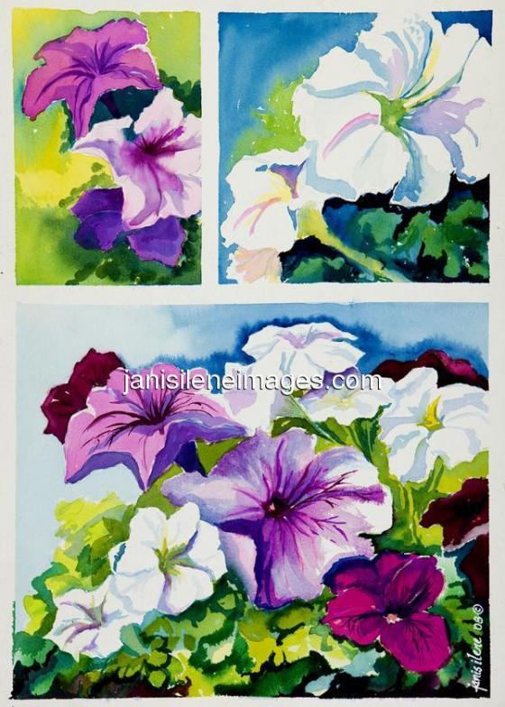 …multicolored petunias in triplicate
