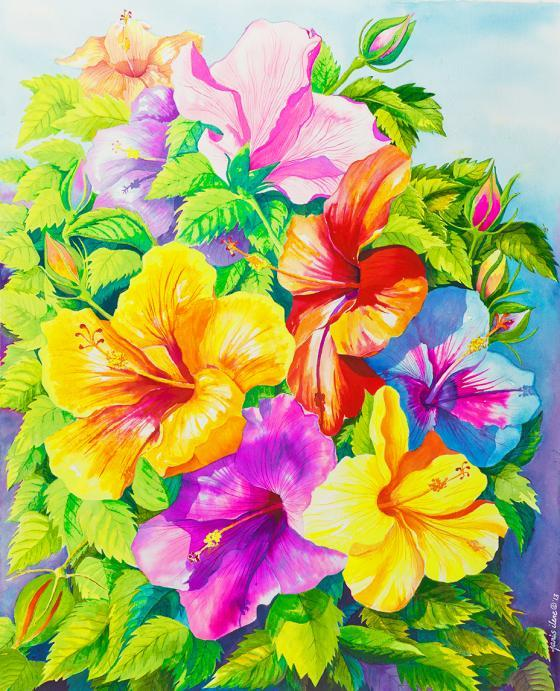 A rainbow of hibiscus blossoms add their jewel-like hues to the summer landscape